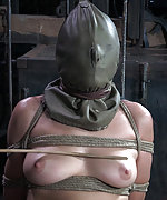 Roped, tit clamped, caned, dildoed and vibed