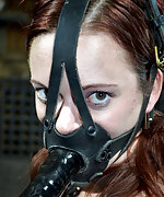 Cutie gets roped, penis-gagged, trained humiliatingly