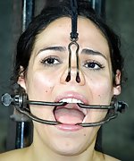 Cuffed, metal-gagged, nose-hooked, dildoed